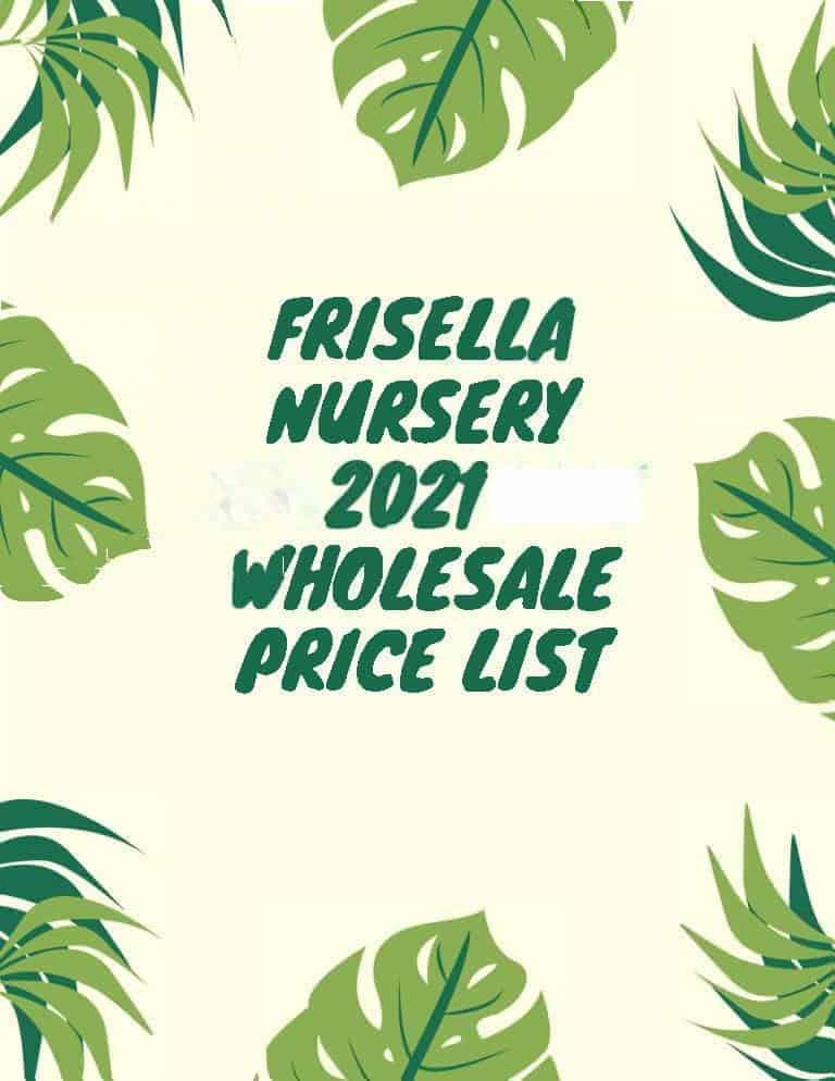 Frisella Nursery price list